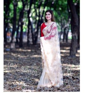 Formal Claret Embroidered Saree